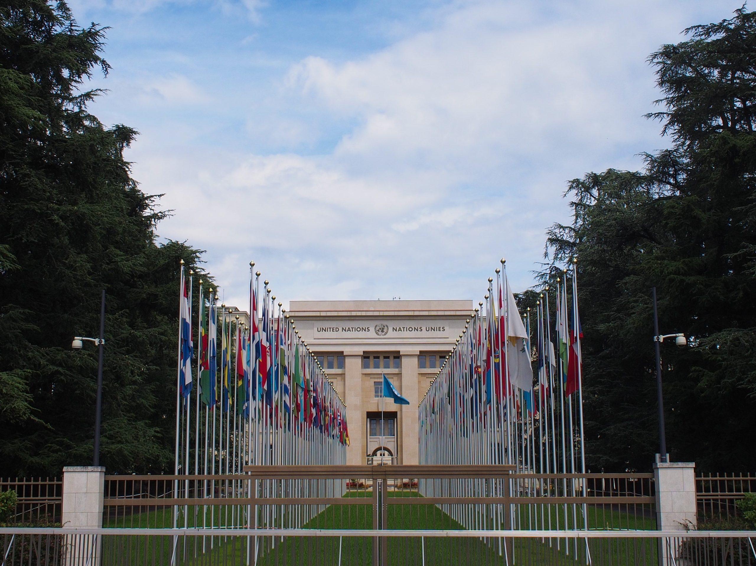 国連恣意的拘禁作業部会のこと